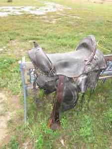 Collectible saddles & other riding tack