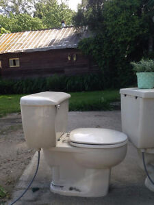 FREE! Toilet and older sink