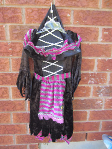 Witch Costume (size 2T)
