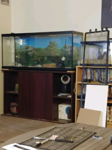55 gal reptile tank and stand with everything