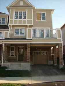 Brand New VIllage Home for Rent Kitchener / Waterloo Kitchener Area image 1