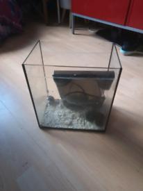 17 inch fish tank