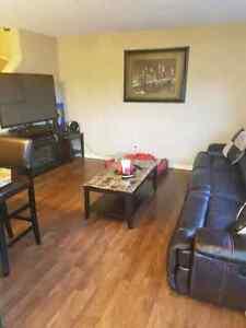 Basement room for rent  Strathcona County Edmonton Area image 1