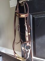Headstall and reins