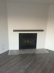 Fully Renovated Apartment In Chomedey Laval