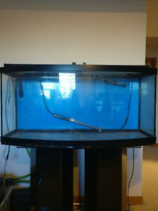 72 Gallon Curved Fish Tank