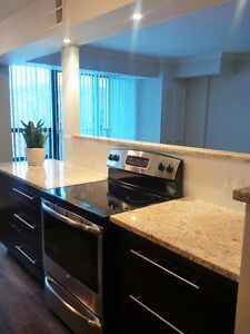 BEAUTIFUL fully furnished two bedroom in the heart of downtown!!