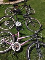 Three Bicycles for Sale
