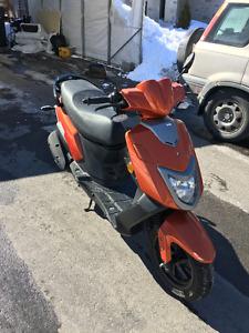 Scooter PGO T-Rex B1 2009