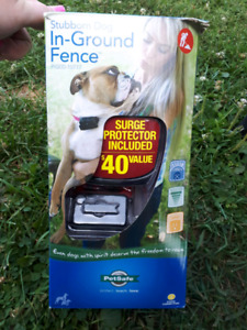 PetSafe Electric Fence for Stubborn Dog