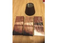 3 lampshades and 3 canvas pictures £5