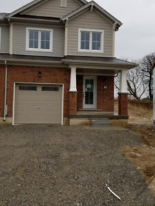Brantford New End Unit Town House for Rent