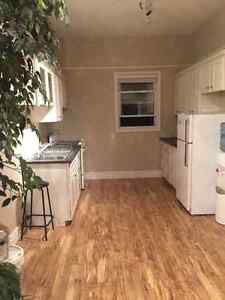 Large 1 Bedroom Apartment with private Laundry in old south London Ontario image 5