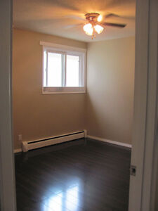 DOGS, DOGS, small DOGS. SPACIOUS 1 BR   SEPT. 1ST.