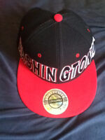 Washington D.C. Snapback
