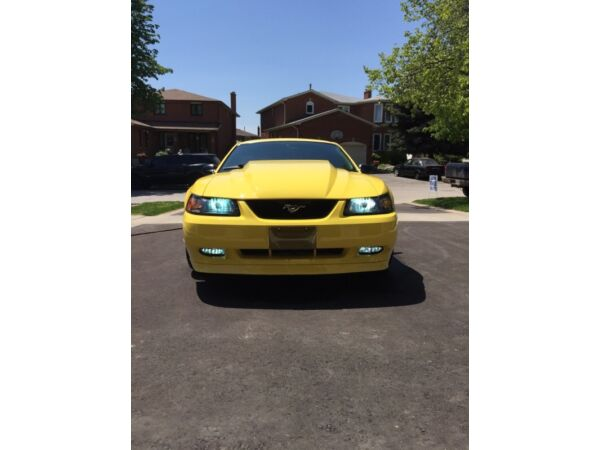 2002 Mustang GT For Sale!! Low KM!! Great shape car must go!!!
