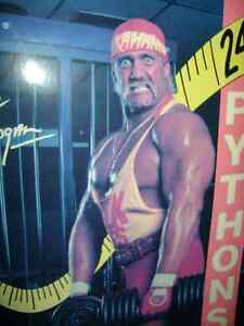 OLD WWF POSTERS