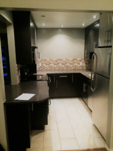 Large Gorgeous Condo for rent (2 bed) - Ermineskin - October 1
