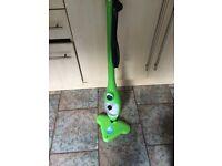 Green steam mop