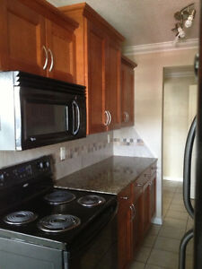 New Years Rental Jan 1st - 3 bd & 2 bd Whyte Ave Apt for Rent !!