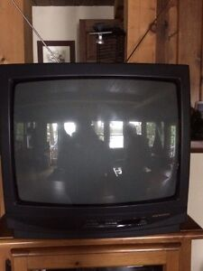 "19"" Magnasonic TV"