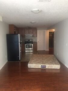 1 bedroom basement for rent in hiddenvally