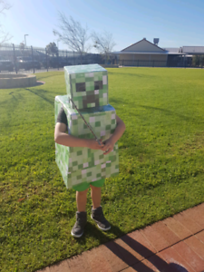 Minecraft costume book week