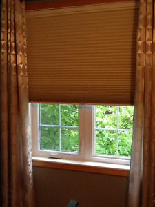 Moodscapes Cellular Window Shade