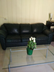 Leather Couch with Pull-Out Bed and Matching Leather Loveseat