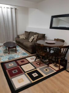 2 to 3 bedrooms furnished walkout, daily, weekly, monthly$150