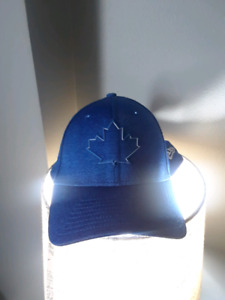 Blue Jays AL East Hat. Like new.