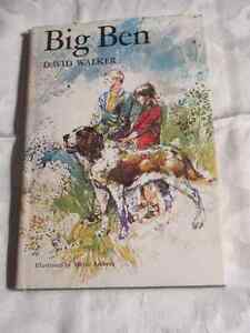 Big Ben (Adventures of a St Bernard) - Vintage story with pics.