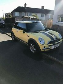 mini one 02 plate BARGAIN