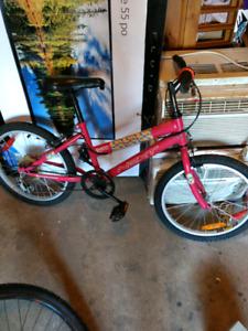 "Girls bike 19"" 6 speed"