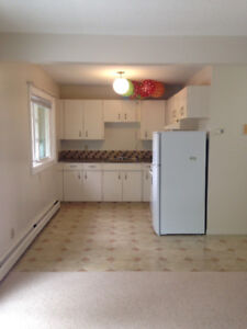 OLD STRATHCONA X LG 1 BD APT FOR RENT FOR PROFESSIONAL