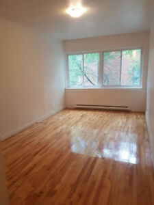 ***Bright 1.5 - FANTASTIC LOCATION! Hot water INCL-Avail NOW!***