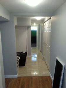 PROFESSIONAL PAINTERS NEW CONSTRUCTIONS & RE-PAINTING ASK NOW!