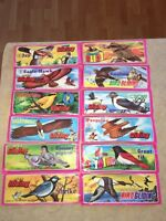 Complete set of bird gliding (12) old