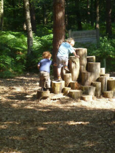 Wanted: Wood logs or stumps for child's play