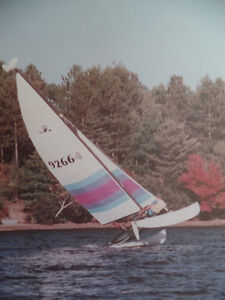 16' Hobie Cat with Trailer