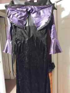 Adult Costume - size large Kitchener / Waterloo Kitchener Area image 2