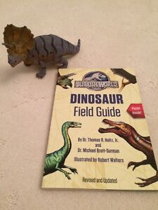 Dinosaur toy and book