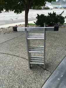 Collapasable 12' Step Ladder