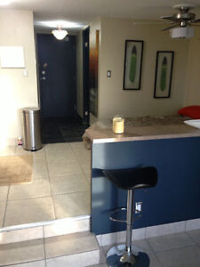 DowNTOWN fully furnished Modern bachelor TOP floor