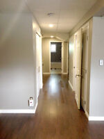 Renovated Basement Suite for Rent (Millwoods)