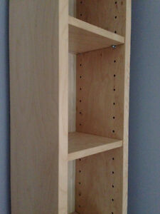 DVD/CD Cabinet/Shelving