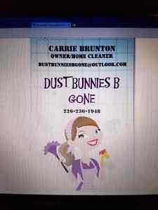 Dust Bunnies B Gone