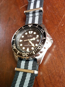 Citizen Eco-Drive Promaster Dive Watch BN0000-04H