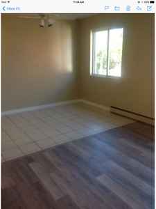 Large 2 bedroom apartment available June 1st
