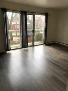 Freshly Renovated 1 Bedroom Apartment in Kits Area with Parkade